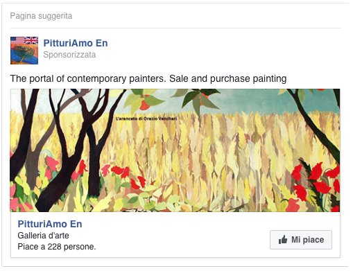 Campagna Facebook - Mi piace alla pagina