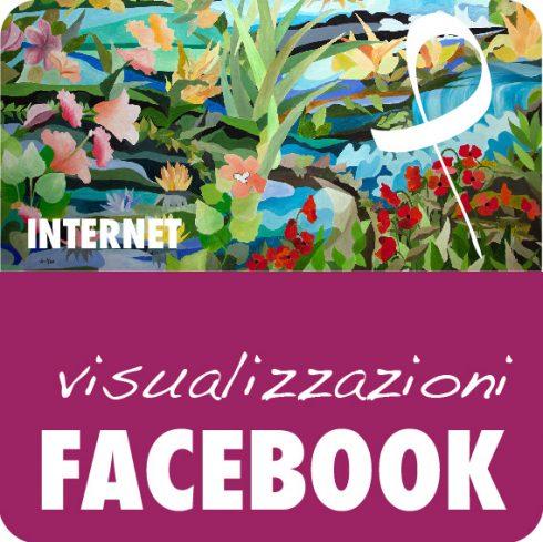 Campagna Facebook Visualizzazioni al tuo post o alla tua pagina